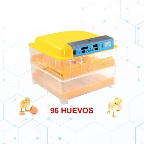 ncub96-1